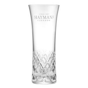 Szklanka G&T Hayman's Gin
